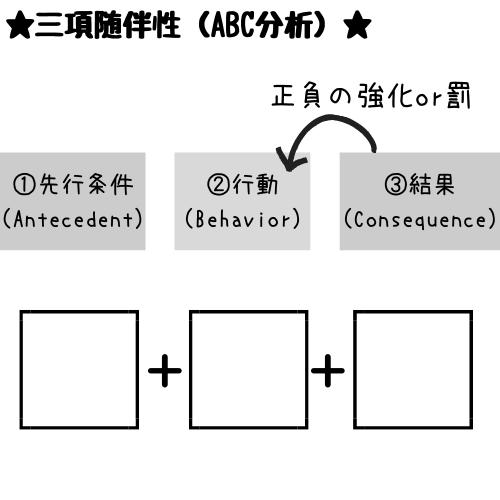 三項随伴性ワーク